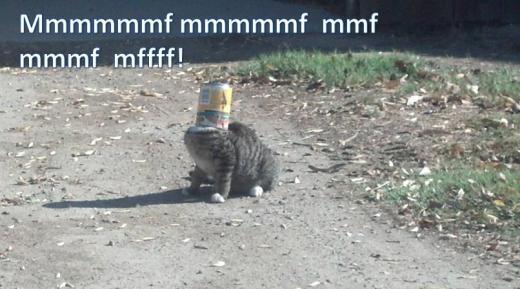 mmmmf